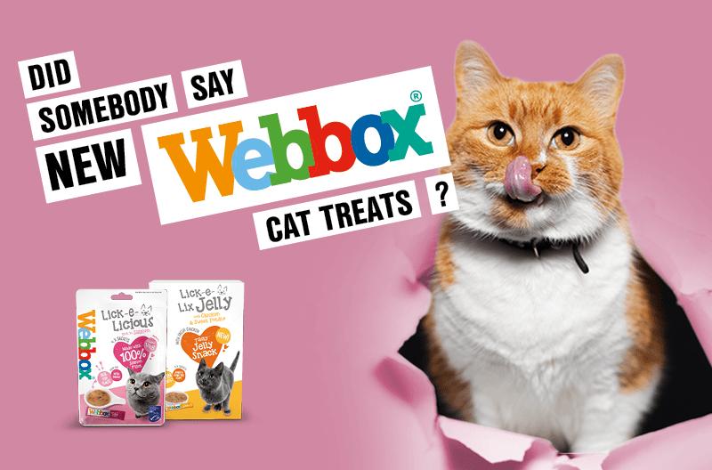 New Webbox Cat Treats