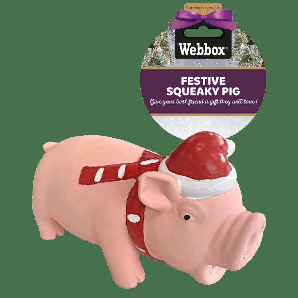 Webbox Festive Squeaky Pig